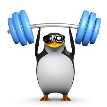 Pinguino con pesas
